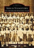 Irish in Youngstown and the Greater Mahoning Valley, Irish American Archival Society Staff, 0738532185