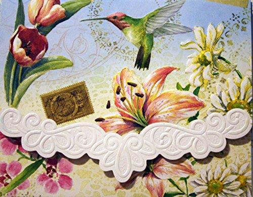 Carol Wilson Fine Arts Inc Delights Blank 10 Card Set Portfolio with a Hummingbird