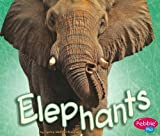img - for Elephants (African Animals) by Kleinhenz, Sydnie Meltzer (2010) Paperback book / textbook / text book