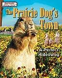 The Prairie Dog's Town, Miriam Aronin, 159716870X