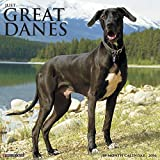 2016 Just Great Danes Wall Calendar