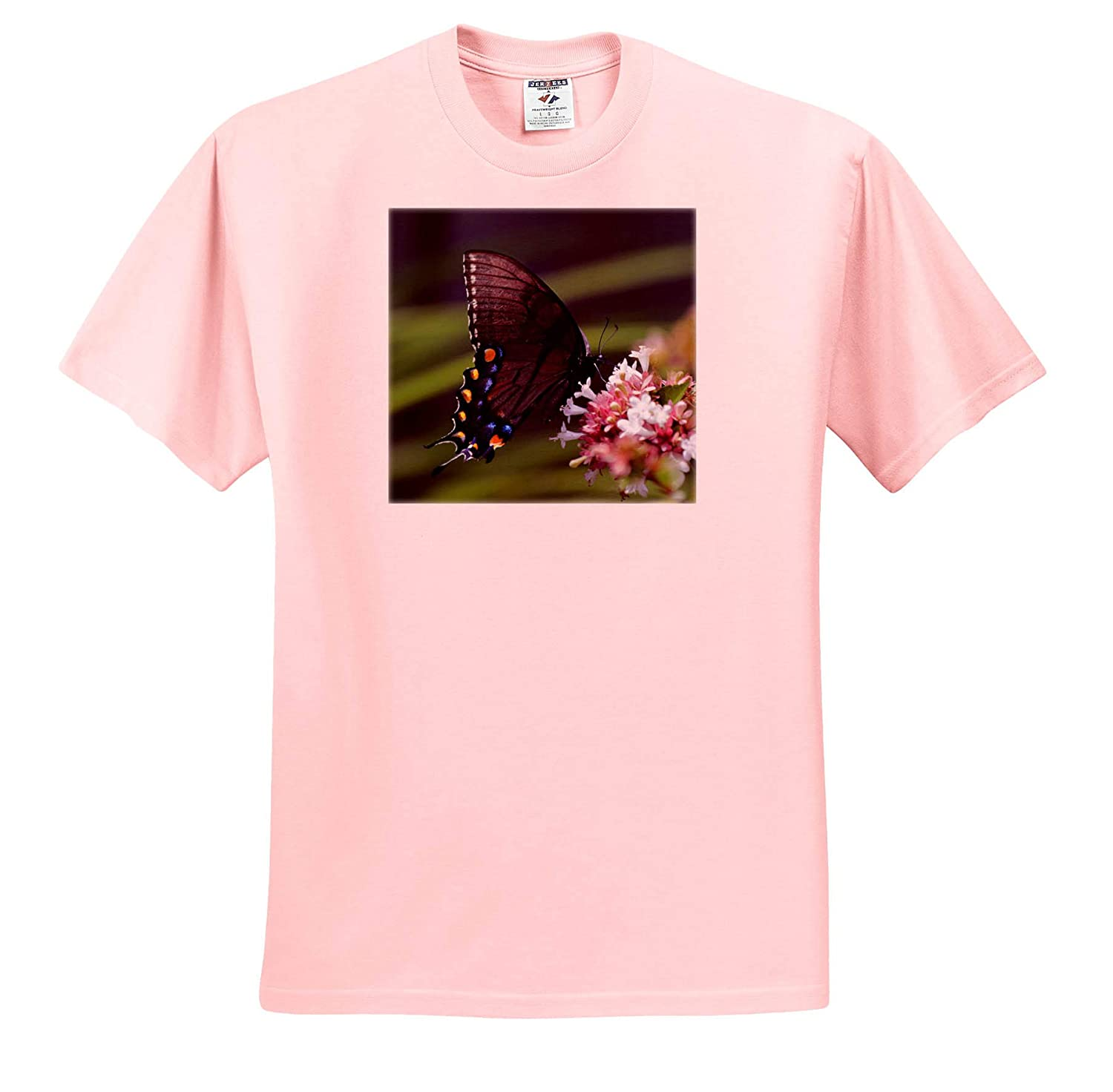 - T-Shirts 3dRose Stamp City Nature Photo of a Black Swallowtail Butterfly Pollinating an abelia Flower
