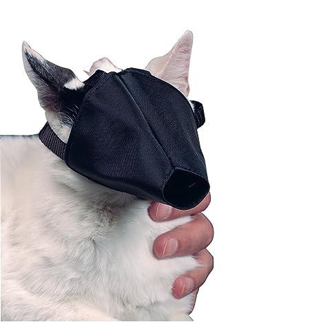 Kruuse Buster bozal para gatos
