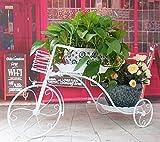 European balcony flower rack / iron multi-storey living room flower stand / floor style flower rack ( Size : 692639cm )