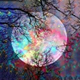 N/X Akaslife DIY 5D Full Drill Diamond Embroidery Painting by Number Kit,Beautiful Bright Moon Diamond Rhinestone Pasted Painting Cross Stitch Crafts for Home Wall Decor (30x40cm)