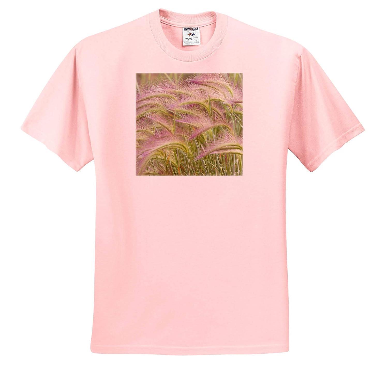 Yukon Foxtail Grass Close-up ts/_313054 Canada Natural Patterns - Adult T-Shirt XL 3dRose Danita Delimont