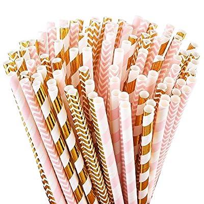 ALINK Biodegradable Paper Straws