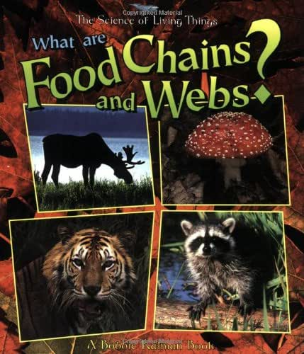 What Are Food Chains and Webs? (The Science of Living Things)