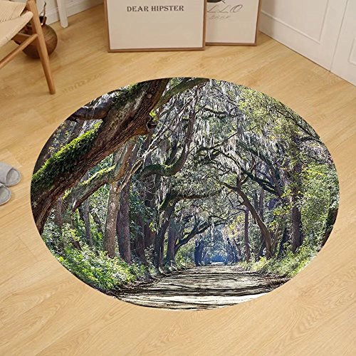 Gzhihine Custom round floor mat Nature Road in the Forest with Trees Botany South Carolina National Park Eco Picture Bedroom Living Room Dorm Fern Green - Stores Outlet In Carolina South