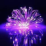 ER CHEN(TM) 99ft Led String Lights,300 Led Starry