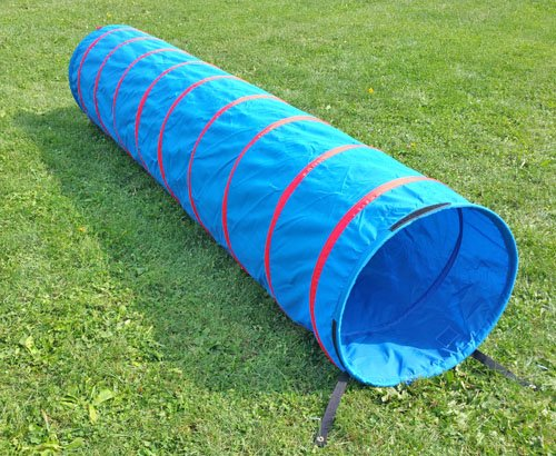 Agility in a Bag with 9 ft tunnel