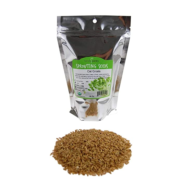 Organic Hulled Oat Groats (Hull Removed): 1 Lbs - Non-GMO Oats - Cereal Grain - Emergency Food Storage, Grains, Rolling for Oatmeal, & More Product Name