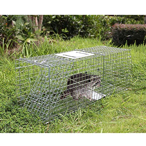 Large Raccoon Trap - Twinkle Star Live Animal Cage 32