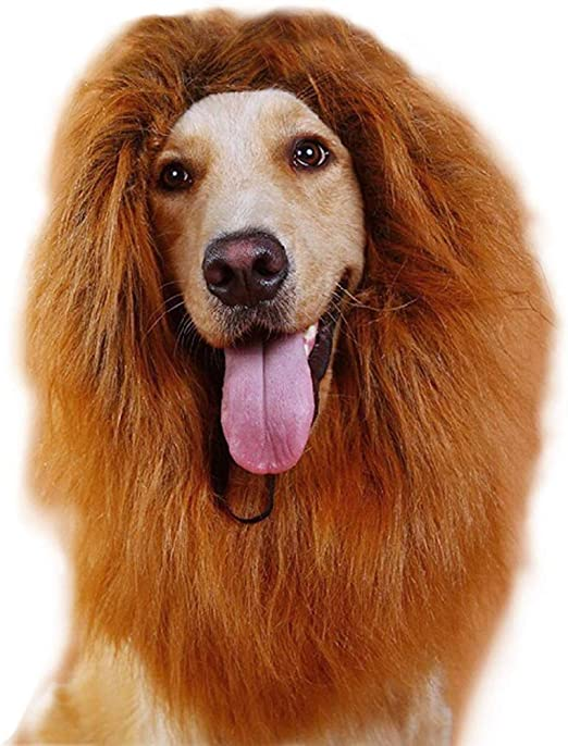 Rhww Peluca De LeóN para Perro, Mascota Perro LeóN Melena Disfraz ...