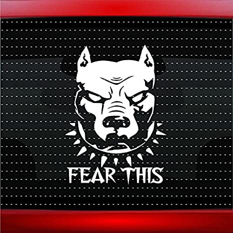 Pitbull # 3 Miedo Esta Funny Savage Pegatina para coche camión Ventana Vinilo: Amazon.es: Coche y moto