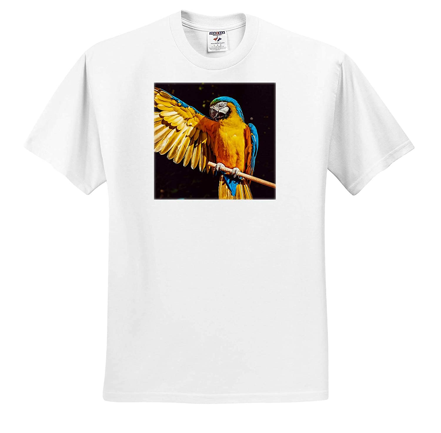 T-Shirts Blue Macaw Bird Parrot with Yellow Wings Feather 3dRose Sven Herkenrath Animal