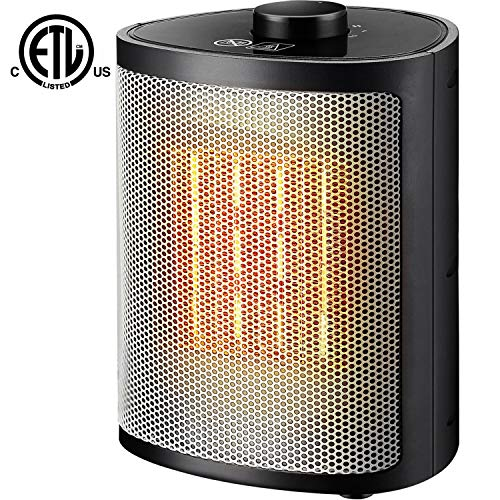 Orony Ceramic Portable Space Heater with Adjustable Thermostat-Perfect for The Home and Office, 750W/1500W, Black