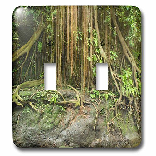 Danita Delimont - Trees - Indonesia, Bali. Ubud. The Ubud Monkey Forest. - Light Switch Covers - double toggle switch (lsp_225781_2) by 3dRose