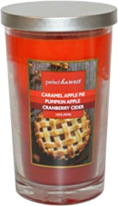 Caramel Apple Pie Pumpkin Apple Cranberry Cider 16 oz Candle