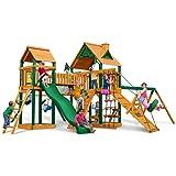 Gorilla Playsets Blue Ridge Pioneer Peak Wood Swing Set