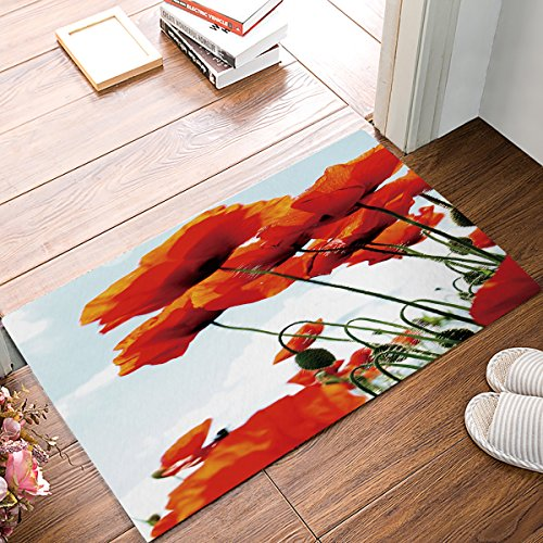 MUSEDAY Floral Entryway Door Rug 20 x 31.5 inch Floor Mat Red Poppy Flowers Chic Landscape Doormat Indoor/Outdoor Door Shoe Scraper Rubber Entrance Mat for Home