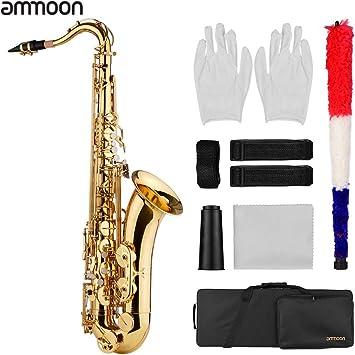 Benkeg saxofón,Bb Saxofón tenor Sax Cuerpo de latón Superficie lacada en oro Instrumento de viento de madera con estuche de transporte Paño de limpieza Cepillo Correas de cuello de saxof: Amazon.es: Bricolaje