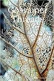 Gossamer Threads, Shei Garner, 1847992242