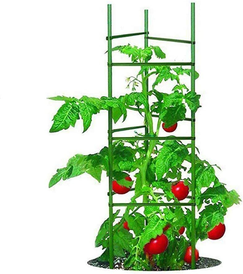 Growsun 5 Ft 5-Pack Tomato Cage Plant Support Garden Stakes, 40 Clips Include