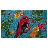 tag - Song Bird Coir Mat, Decorative All-Season Mat for the Front Porch, Patio or Entryway, Multi