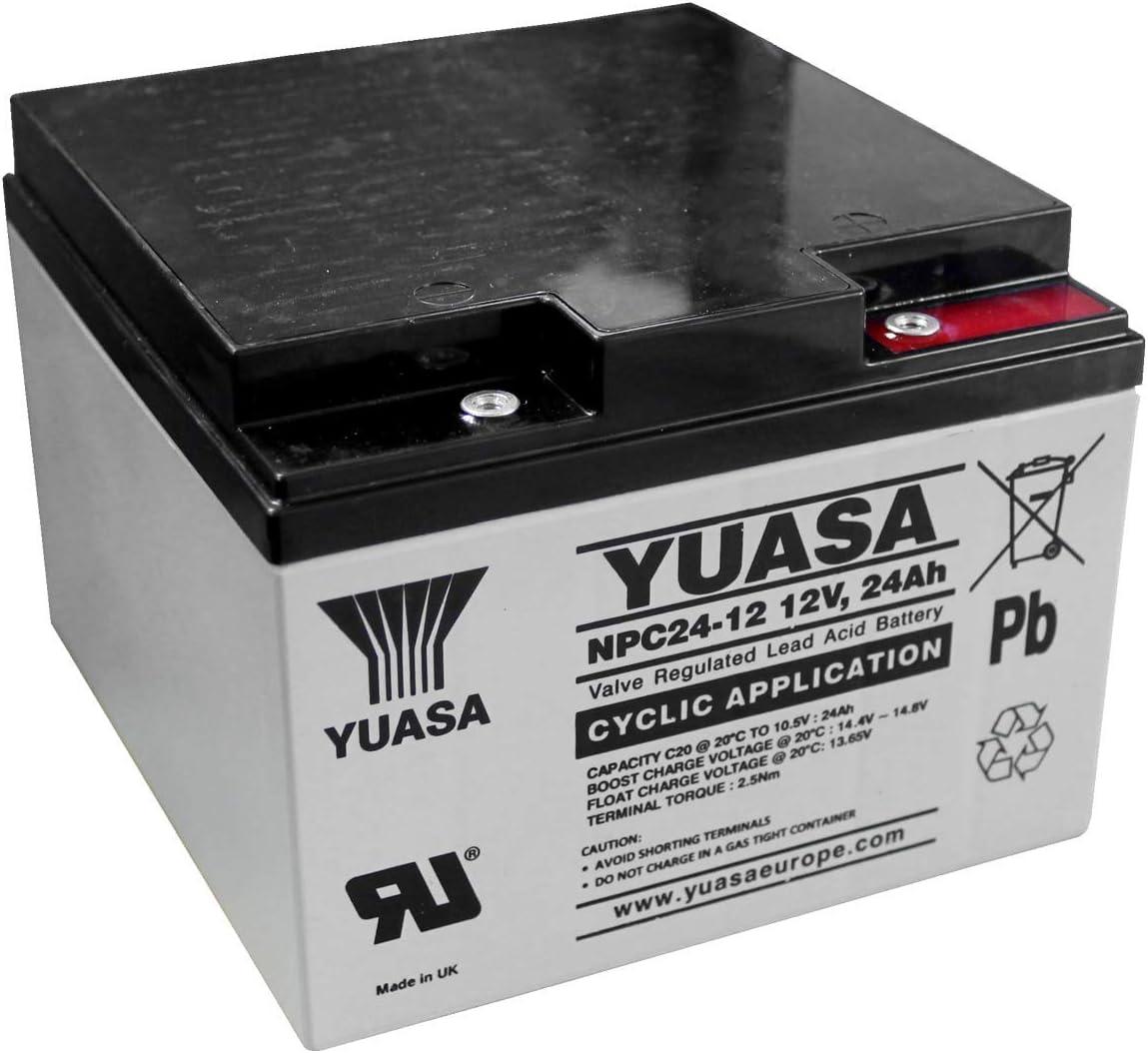 Yuasa - Batería Plomo AGM NPC24-12I 12V 24Ah M5-F: Amazon.es: Coche y moto