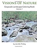 Visions of Nature: Grayscale Landscape Coloring Book Volume 1