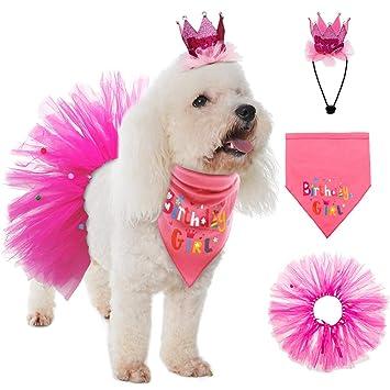Amazon.com: Bandana de cumpleaños para perro, de Escenereal ...