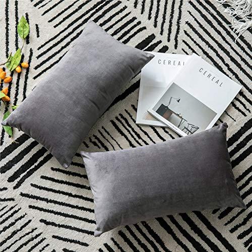 DEZENE Throw Pillow Covers, 2 Pack Super Soft Velvet Decorative Pillow Cases, Luxury Accent Rectangular Pillowcases, Lumbar Cushion Covers for Farmhouse,Couch,Sofa, 12 x 20 Inch, Dark Grey (Pillows Rectangular)