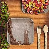 "CaterEco Square Palm Leaf 7"" Salad Plates | 100"