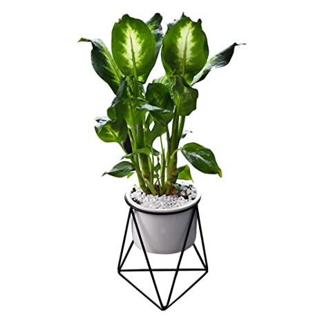 Gaeruite Geometrique Decoration Murale A Suspendre Plant Pot