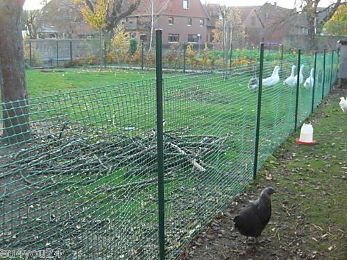 60m² MASCHENGEWEBE 1,2m x 50m Kunststoffzaun Baustellenzaun Geflügelzaun Hühnerzaun Gartenzaun Zaun Rankhilfe Grün