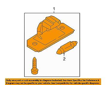 VW - Bombilla de repuesto para matrícula de Volkswagen Passat B6, Touran T5: Amazon.es: Coche y moto