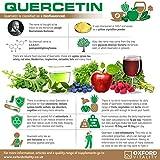 Oxford Vitality - Quercetin Powder for Respiratory
