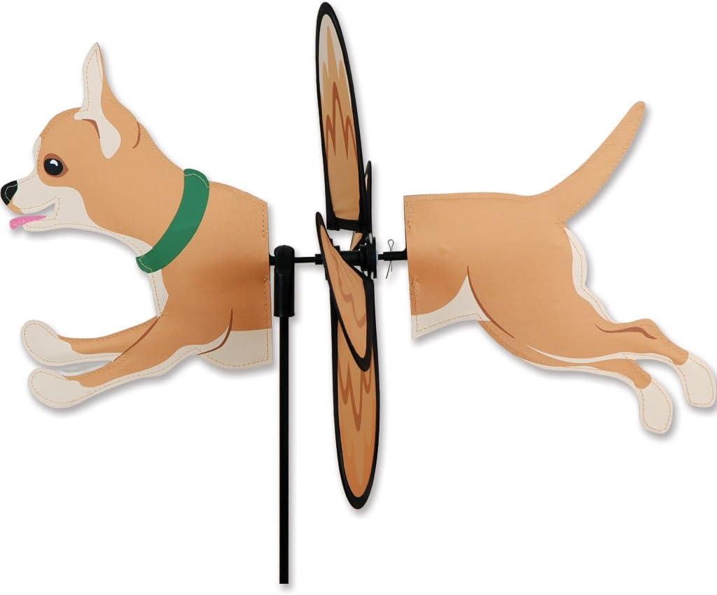 Petite Spinner - Chihuahua