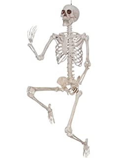 life sized realistic posable skeleton prop 5 foot halloween decoration