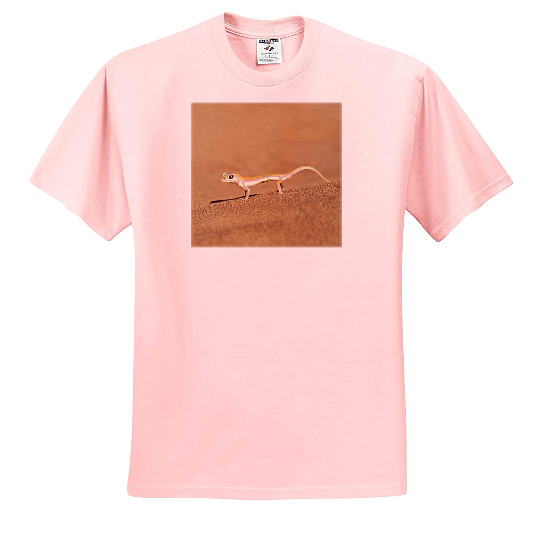 Palmetto Gecko on Sand Geckos ts/_310463 Namib Desert 3dRose Danita Delimont - Adult T-Shirt XL Africa Namibia