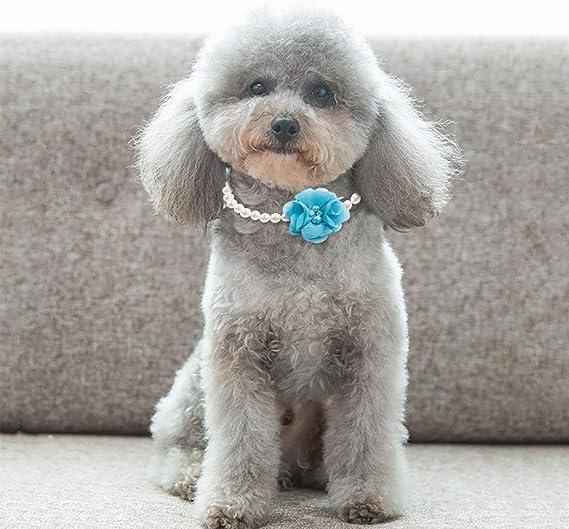 WEATLY Accesorios Collar de Perlas Princesa Pet for Cachorros ...