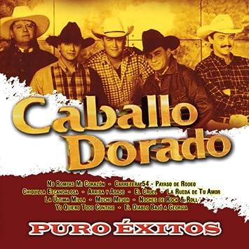 Caballo Dorado Puro Exitos Amazon Com Music