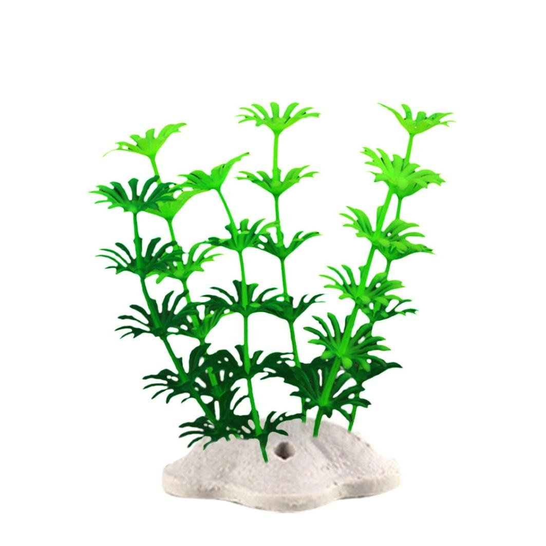 Amazon.com : Vacally 10 Pcs Fish Tank Plastic Decoration Aquarium Green Plants Water Grass Underwater Ornament Plants : Pet Supplies