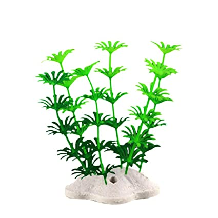 Amazon.com : Vacally 10 Pcs Fish Tank Plastic Decoration Aquarium Green Plants Water Grass Underwater Ornament Plants : Pet Supplies