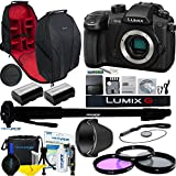 Panasonic Lumix DC-GH5 Mirrorless Micro Four Thirds Digital Camera (Body Only) + Deal-Expo Essential Travel Photo Accessories Bundle- ( International Version )