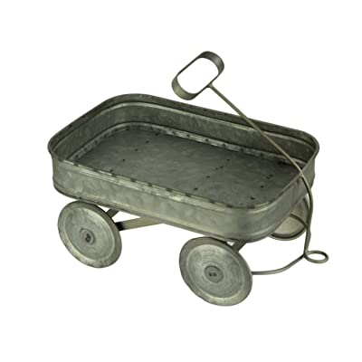 Galvanized Metal Rustic Farmhouse Wagon Plant Stand Small : Garden & Outdoor