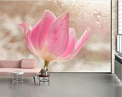 Amazoncom Mznm Custom Wallpaper Mural Modern Rose Flower Waterdrop - Tapices-de-pared-modernos