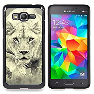 For Samsung Galaxy Grand Prime G530H G5308 - Lion Photo Female Hunting Safary Big Cat Case Cover Protection Design Ultra Slim Snap on Hard Plastic - God Garden -