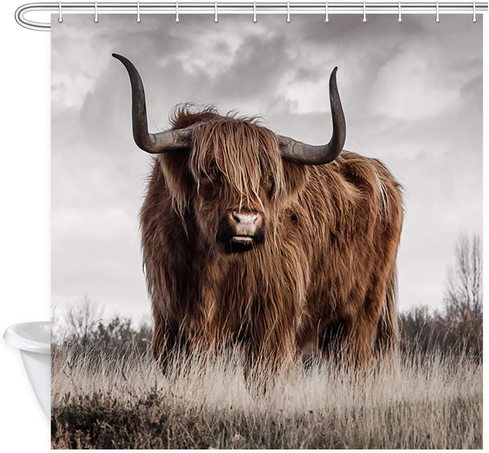 JAWO Animal Cow Shower Curtain for Bathroom, Highland Cattle in Fall Grassland Fabric Bath Curtains Bathroom Decor, 69X70 Inches, Hooks Include